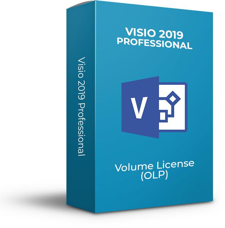 Aplicatie Microsoft Visio Professional 2019, Engleza, OLP NL